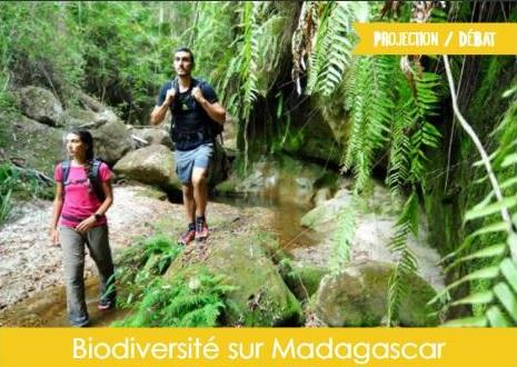 Biodiversité sur Madagascar