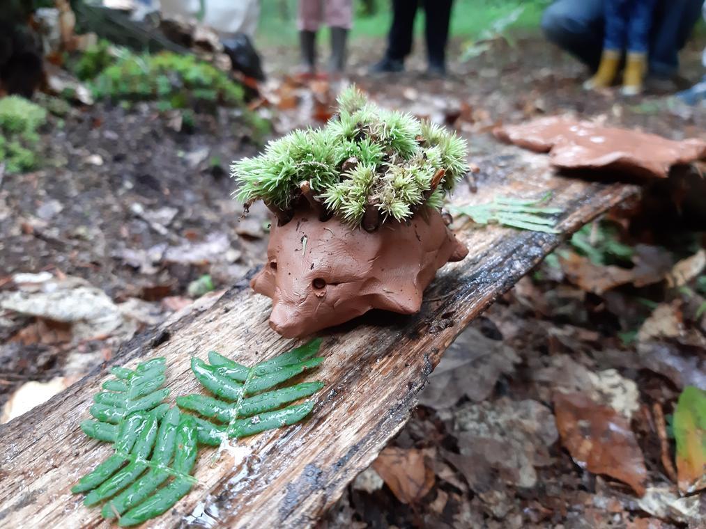Land'art en forêt