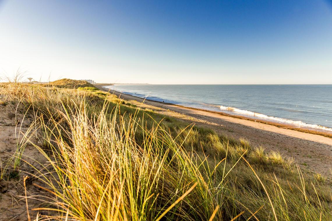 Entre Dunes et Forêt_©S. Bourcier
