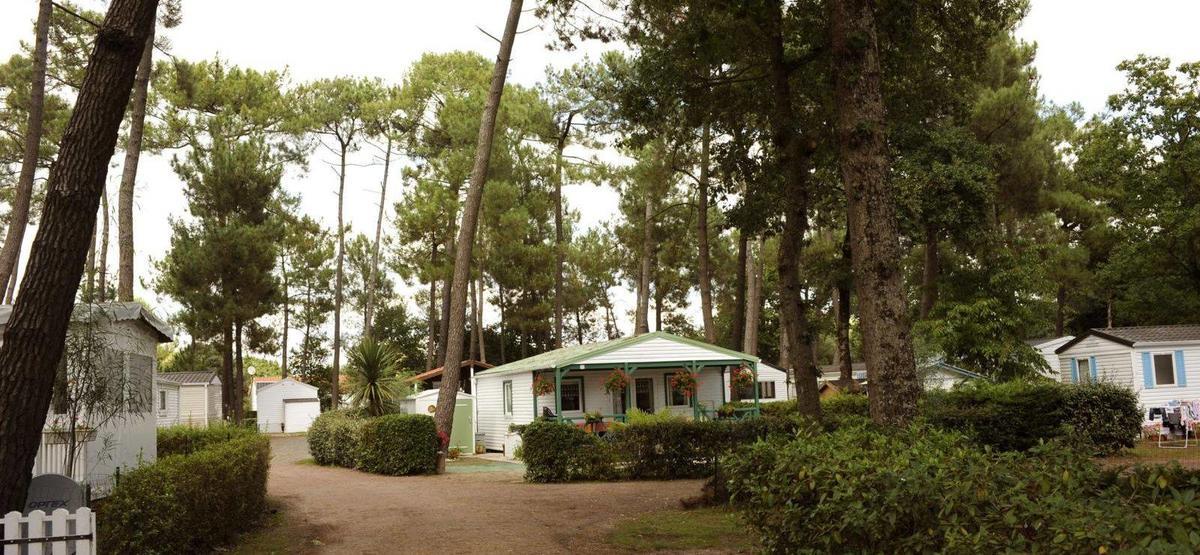 Domaine Orée des pins_Saint Hilaire de Riez