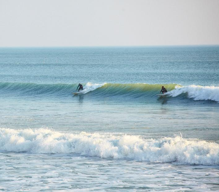 59648_surf