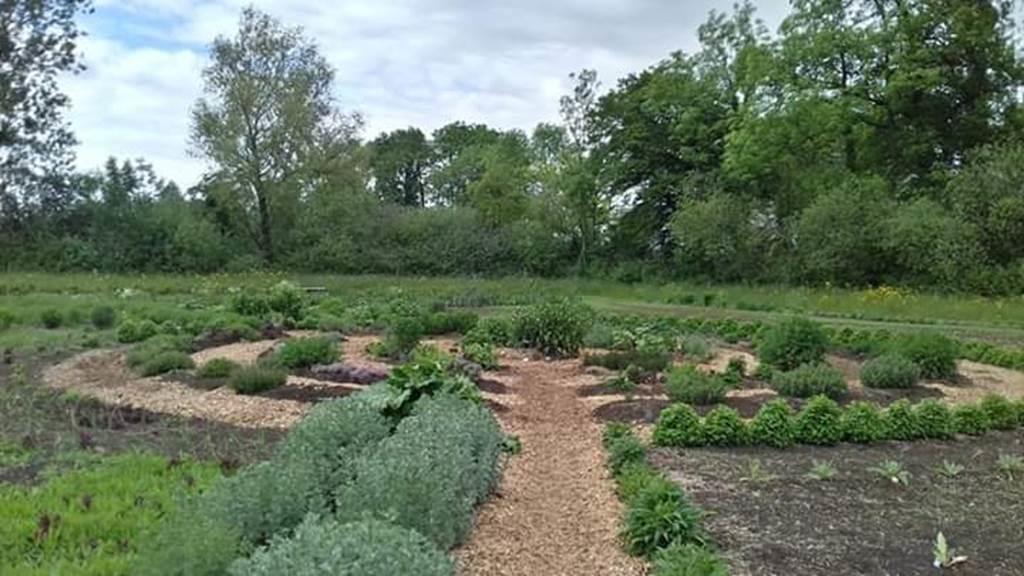 Jardin Mandala des Herbes Folles