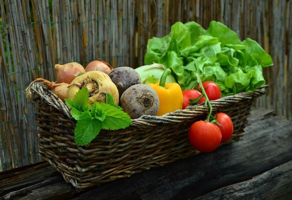 Lionel Lauture légumes