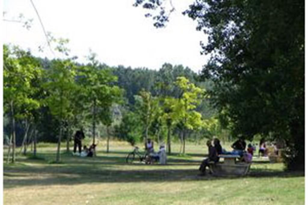 Aire de pique-nique / Verdun-sur-Garonne