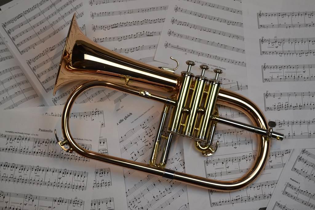 Harmonie de Haybes