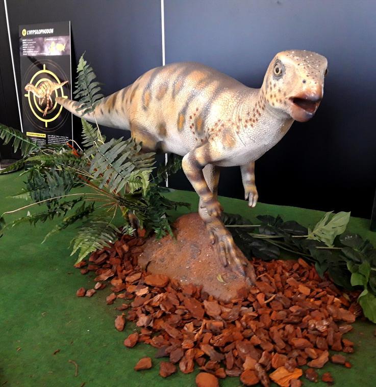 Une des maquettes de dinosaures.