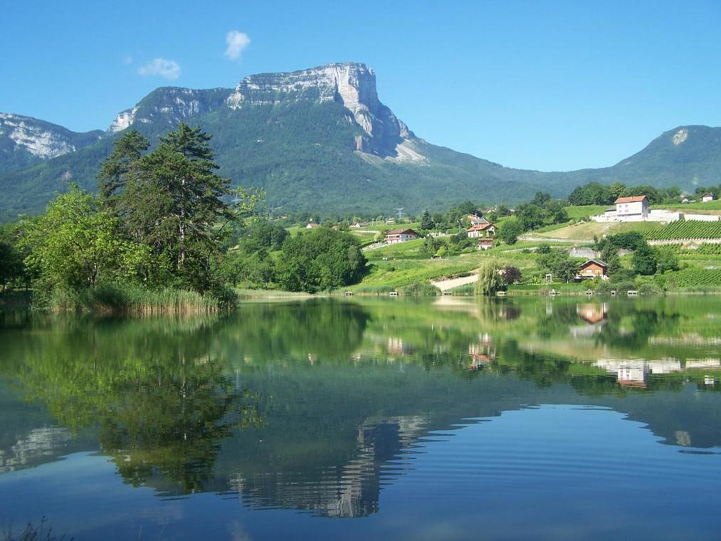 Vignoble et lac St André