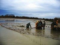 Route des Etangs de la Dombes Pêche traditionnelle