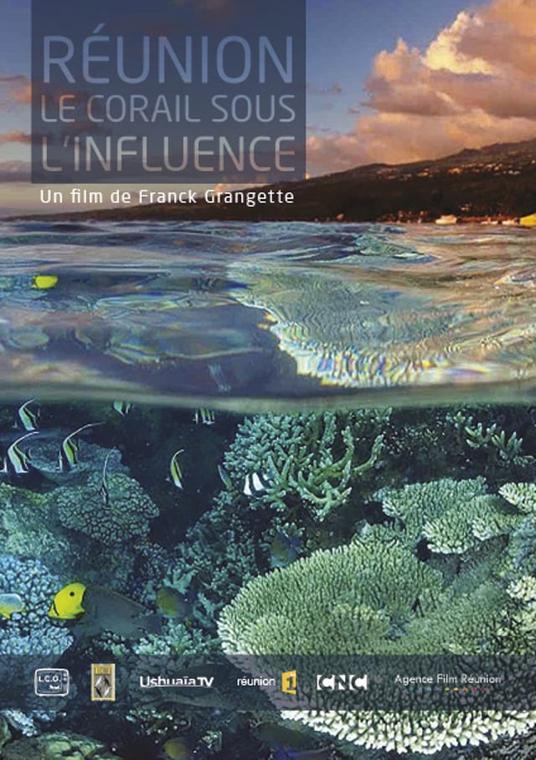 Réunion, le corail sous influence