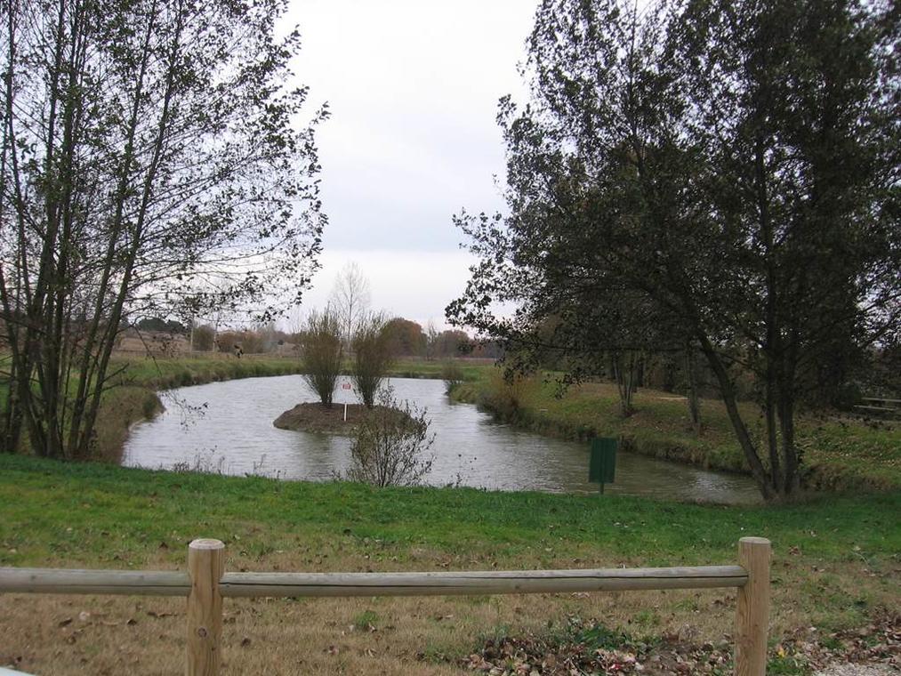 lac de Villemade, Tarn-et-Garonne, lac de pêche, nature