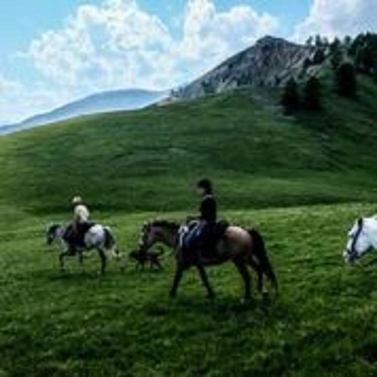 Horse & Ventures