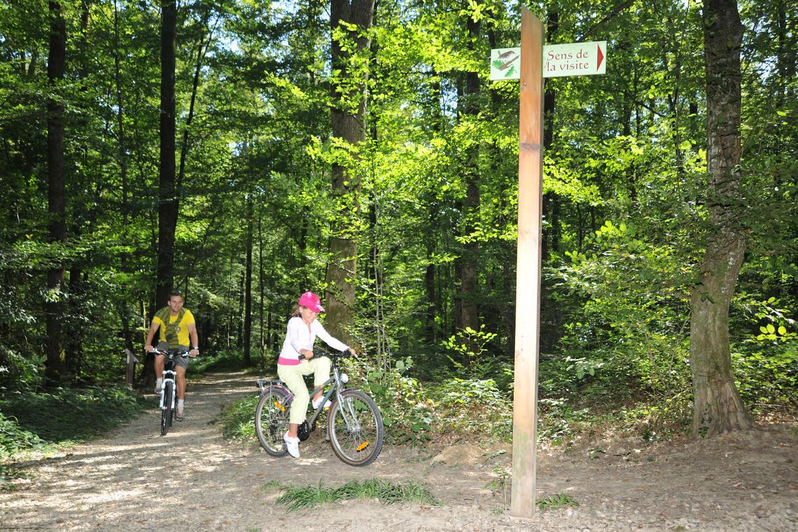 cyclo credit Corinne Bertrand (3)