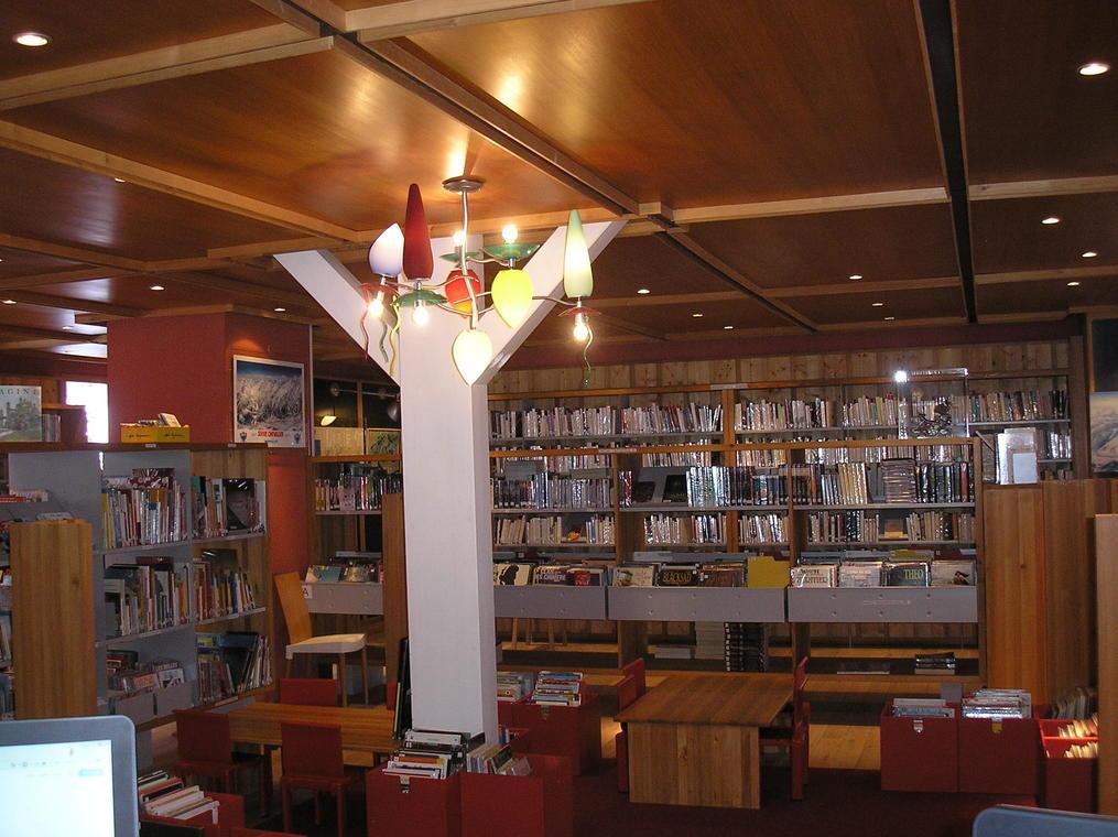 Bibliothèque Frison Roche