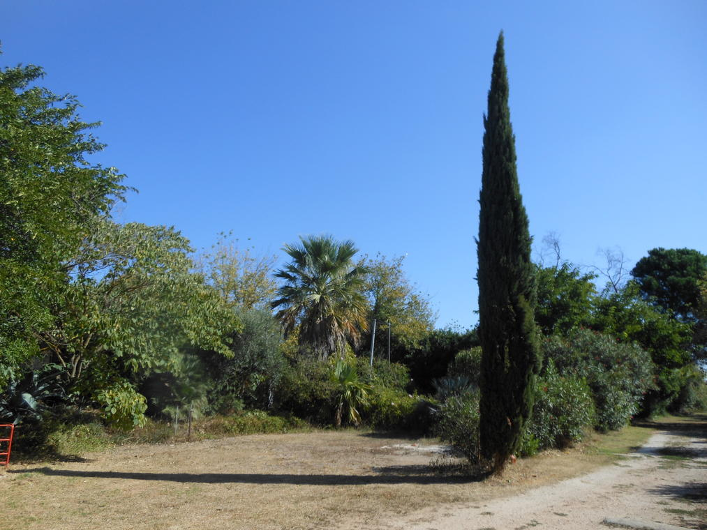 Camping Le Paluel