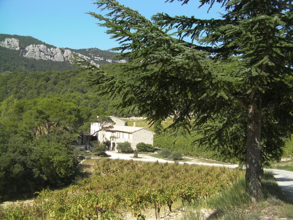 Domaine de Cassan - Lafare