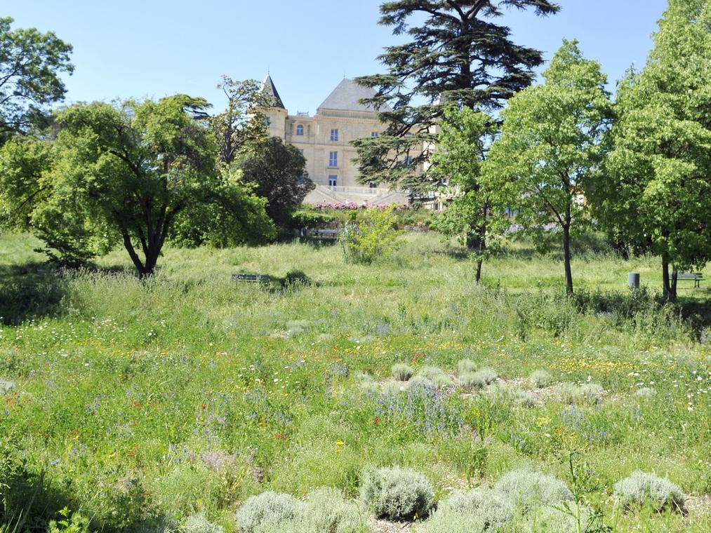 Parc des 7 Collines - Château de la Buzine