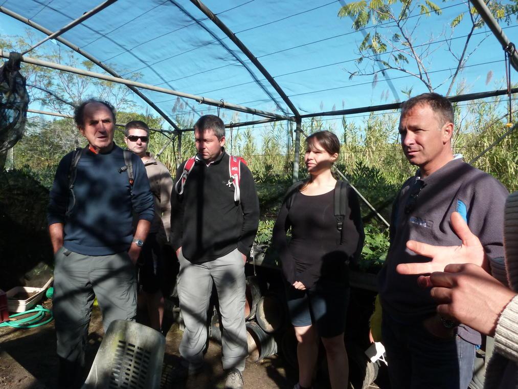 Visite d'une serre du conservatoire botanique