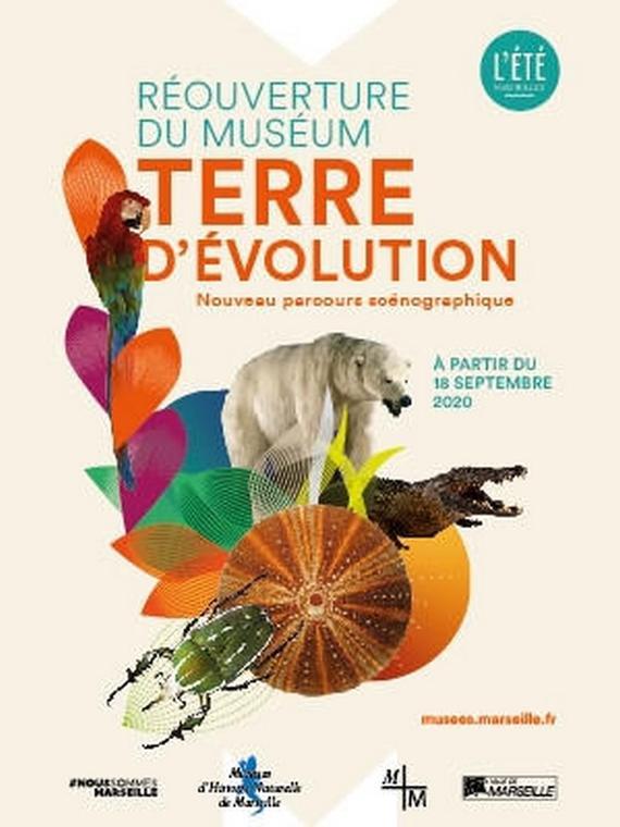 Collection permanente du Muséum d'Histoire Naturelle de Marseille
