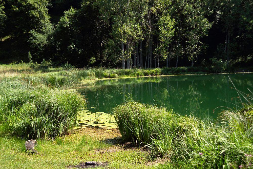 Lac Saint Sixte Merlas Valdaine Pays Voironnais