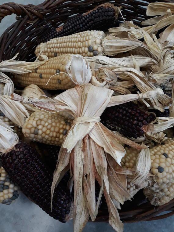 poupée en feuille de maïs