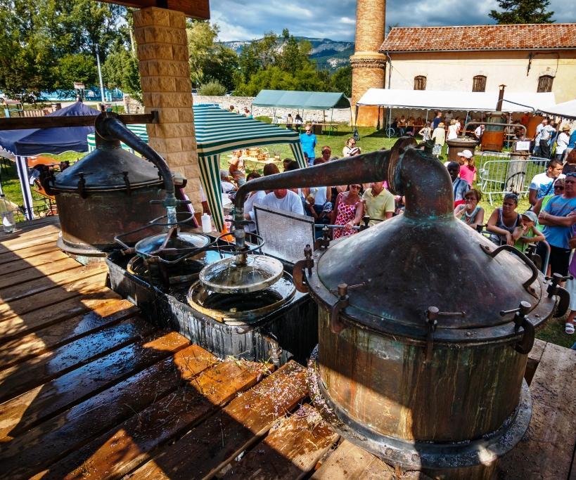 Distillation de la lavande