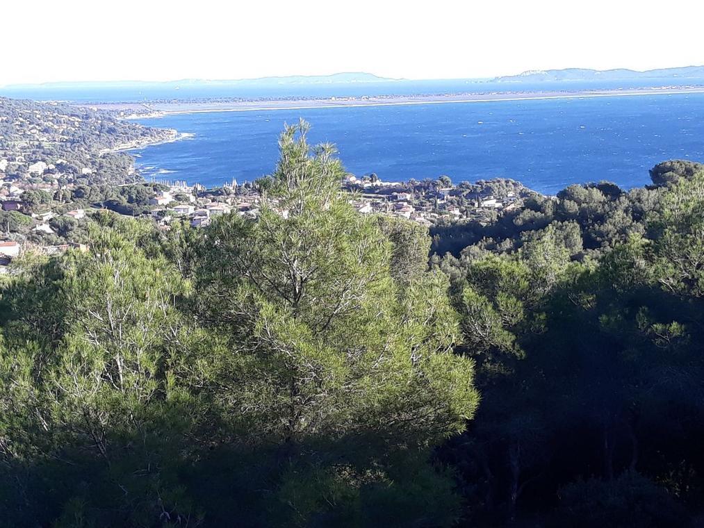 Baie de l'Almanarre vue du fort de la Bayarde