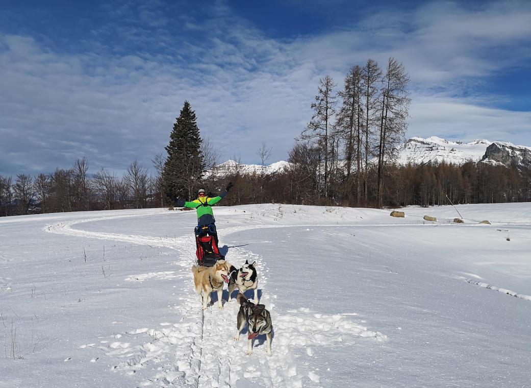 Conduite d'un traîneau à chiens avec Passion Traineau