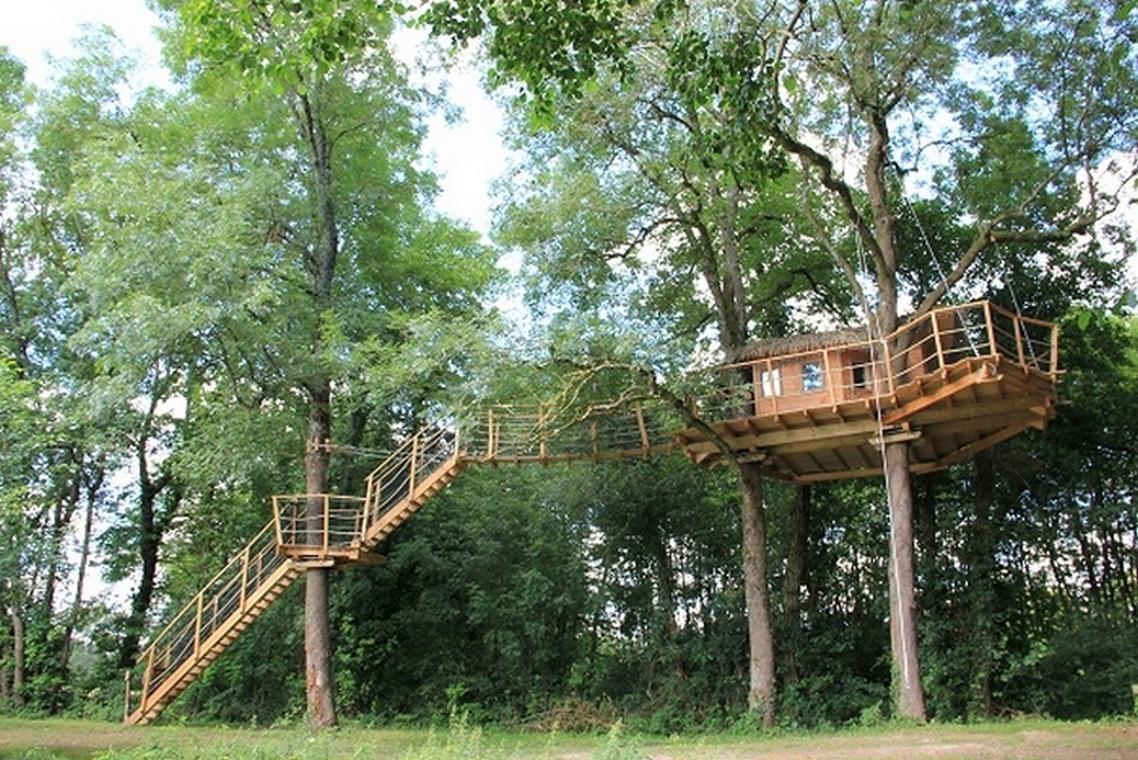Cabane dans les arbres Feuilles