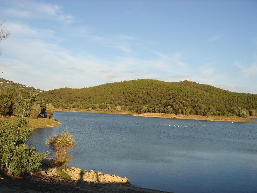 Barrage du Trapan - Bormes-les-Mimosas