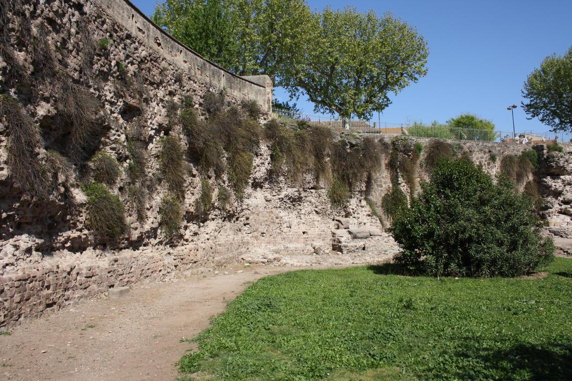 """Visite guidée """"Forum Iulli, colonie romaine, la Pompéi provençale"""""""