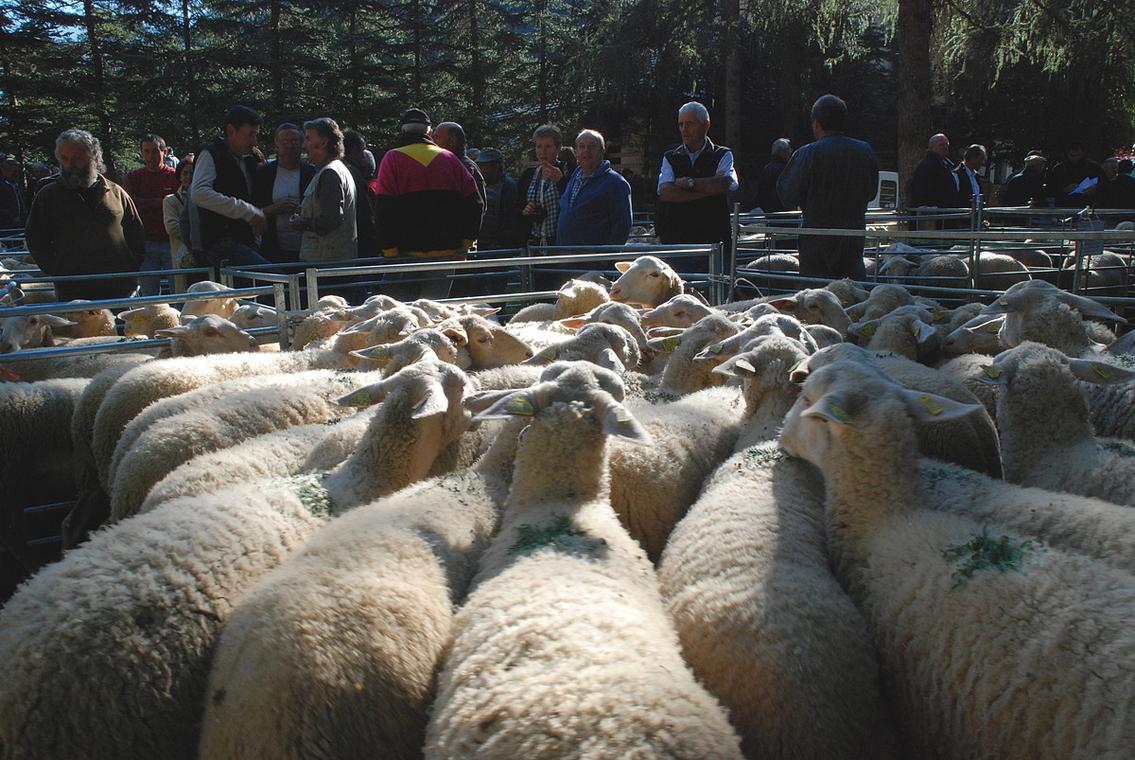 Foire aux bestiaux de La Chapelle