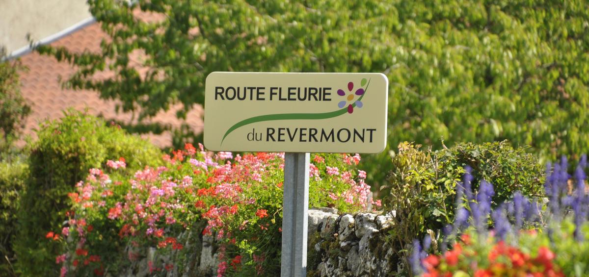 Route fleurie du Revermont