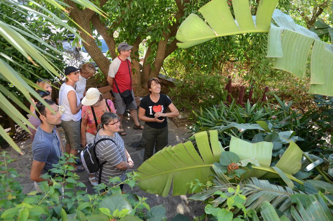 Visite guidée botanique