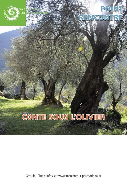 Affiche Contes sous les oliviers