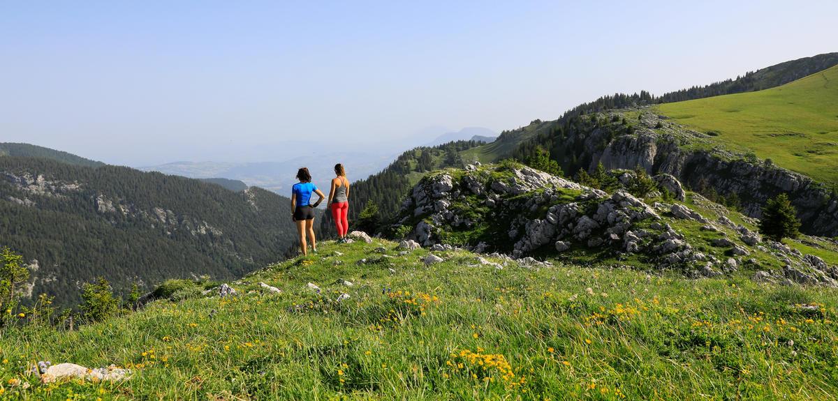 """Trail """" Col de Porte """""""