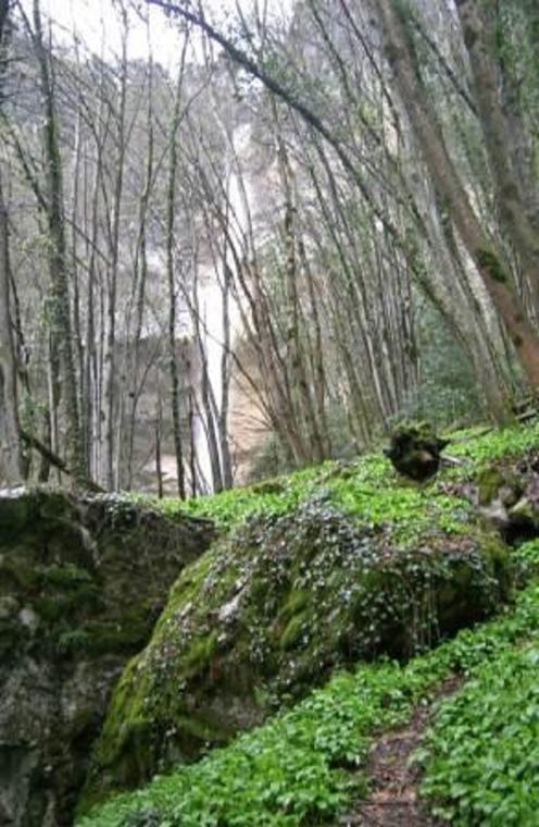 Cascade du Furet
