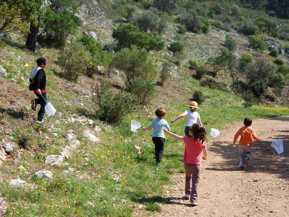 Les petits explorateurs de la colline