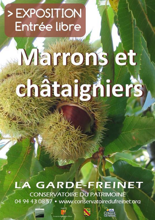 Marrons et châtaigniers