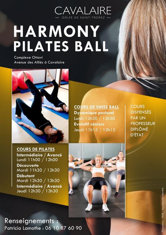 Harmony Pilates Ball