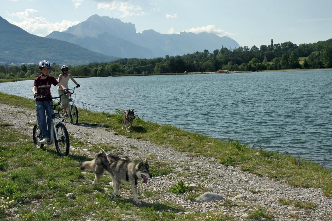 Cani-Trot' - Alpi Traineau