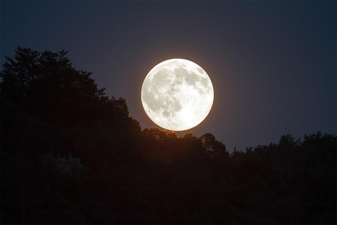 Balade au clair de lune