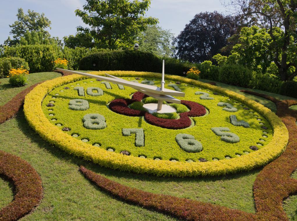 horloge fleuri