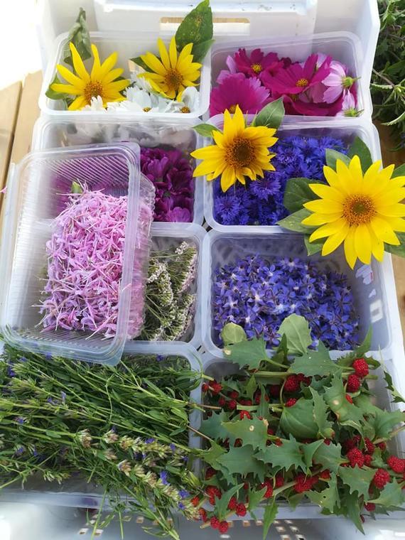 Des fleurs en soi à Val Revermont