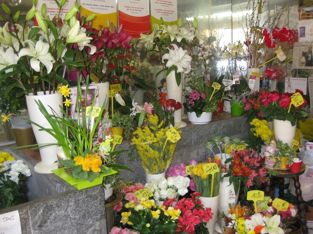 Annot Fleurs