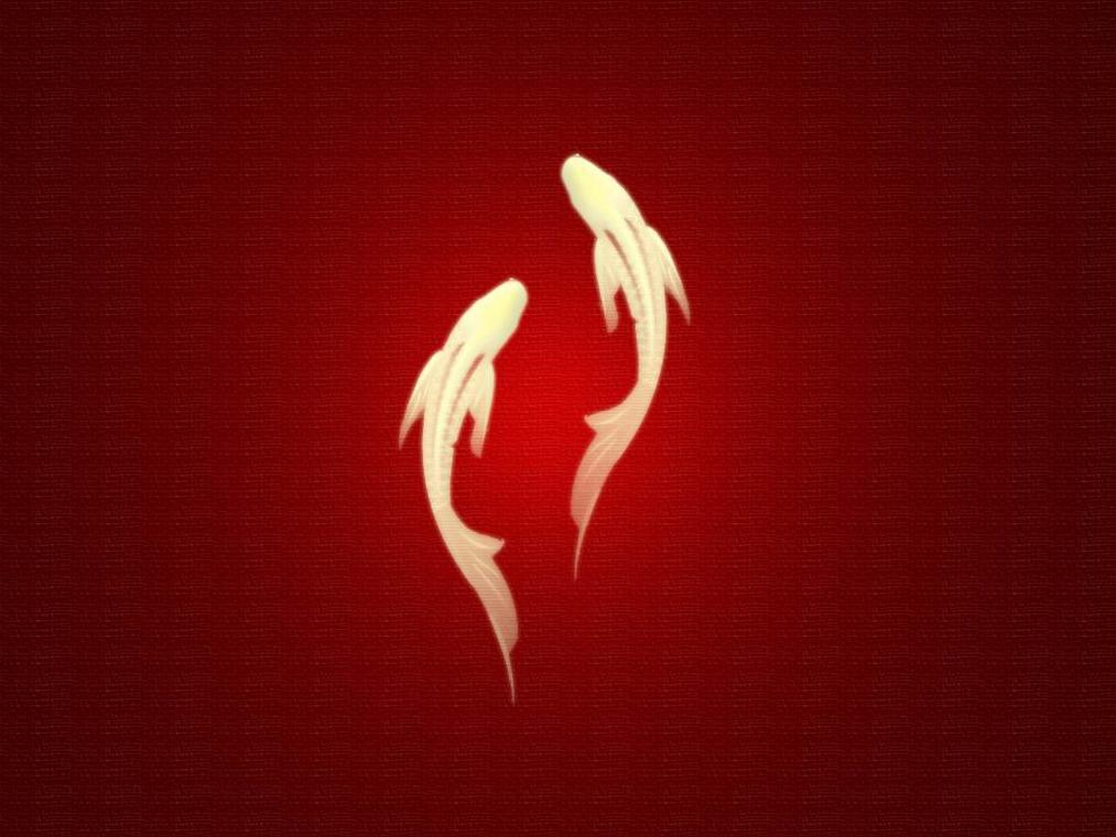 Esprit feng shui & Tuina
