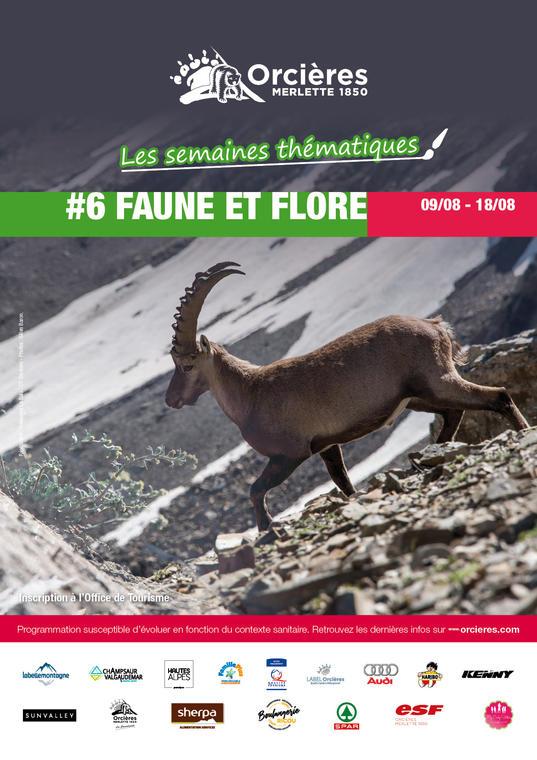 """Semaine thématique """"Faune et flore"""""""