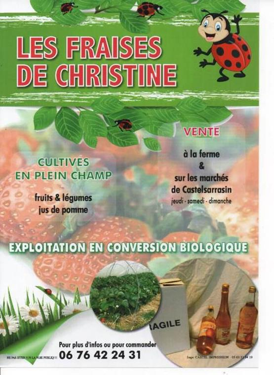 Les Fraises de Christine
