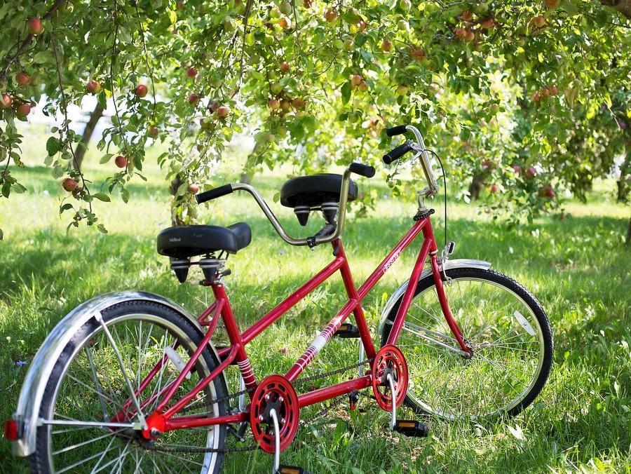 tandem-bike-905067_1920