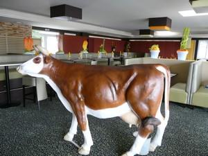 villa grill