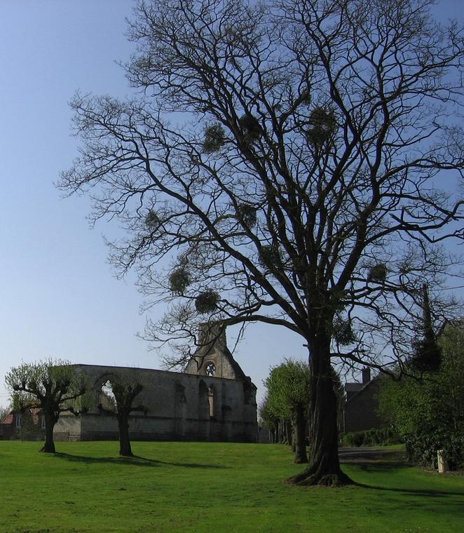 Aisne, SISSY. Chapelle des Dormants de Sissy. Tortosa, CCVO bis